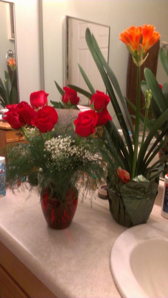 Valentine's 2013 Flowers